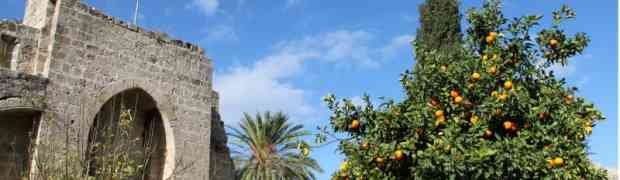 Lernen Sie die Welt kennen! adamare Ziele im Fokus: Griechenland & Zypern